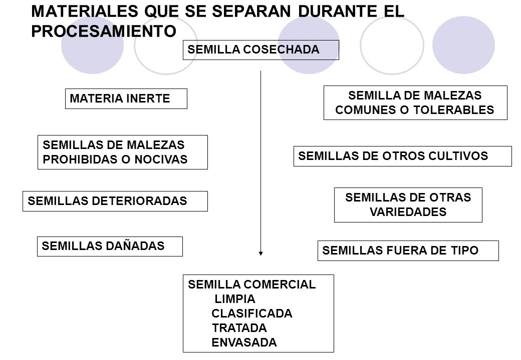 MATERIALES QUE SE SEPARAN DURANTE EL PROCESAMIENTO SEMILLA COSECHADA SEMILLA COMERCIAL LIMPIA CLASIFICADA TRATADA ENVASADA SEMILLAS FUERA DE TIPO SEMILLAS DE MALEZAS PROHIBIDAS O NOCIVAS SEMILLAS DAÑADAS SEMILLAS DETERIORADAS SEMILLA DE MALEZAS COMUNES O TOLERABLES SEMILLAS DE OTRAS VARIEDADES SEMILLAS DE OTROS CULTIVOS MATERIA INERTE