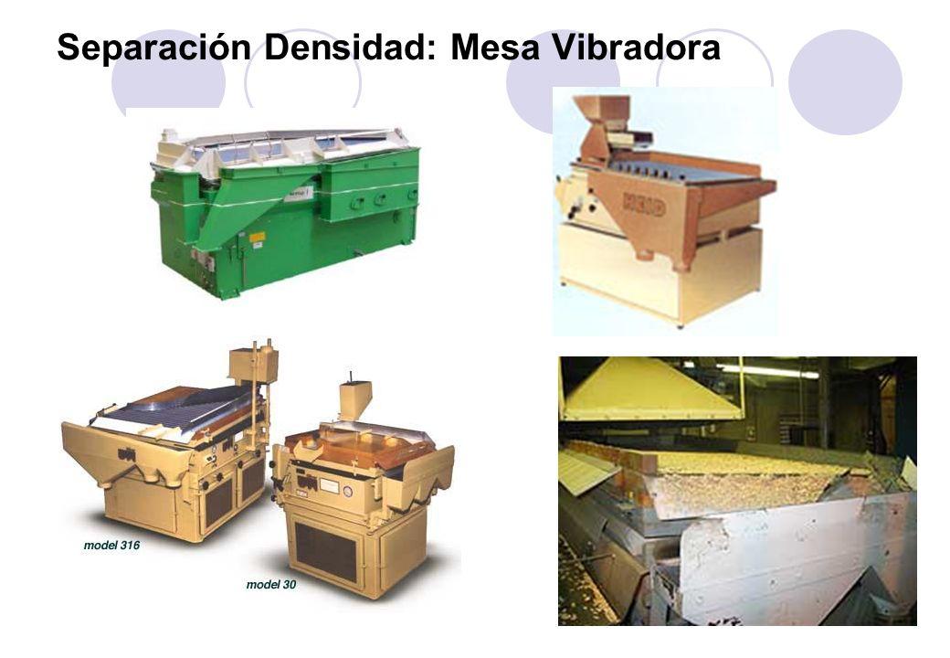 Separación Densidad: Mesa Vibradora