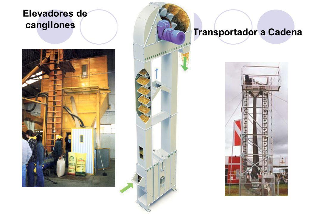 Transportador a Cadena Elevadores de cangilones