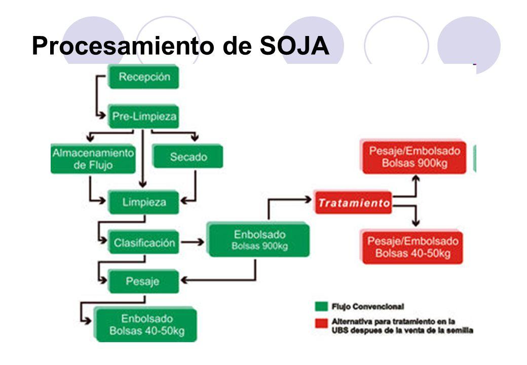 Procesamiento de SOJA