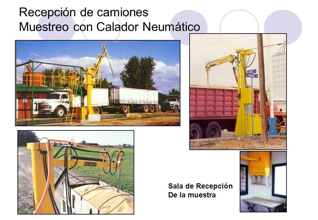 Recepción de camiones Muestreo con Calador Neumático Sala de Recepción De la muestra