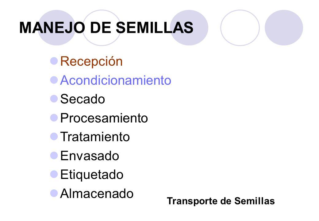 MANEJO DE SEMILLAS Recepción Acondicionamiento Secado Procesamiento Tratamiento Envasado Etiquetado Almacenado Transporte de Semillas