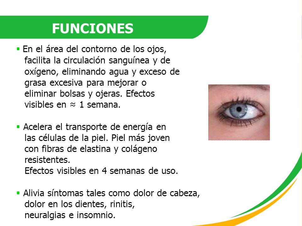 FUNCIONES En el área del contorno de los ojos, facilita la circulación sanguínea y de oxígeno, eliminando agua y exceso de grasa excesiva para mejorar