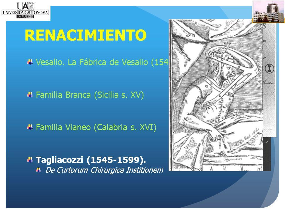 RENACIMIENTO Vesalio. La Fábrica de Vesalio (1543) Familia Branca (Sicilia s.