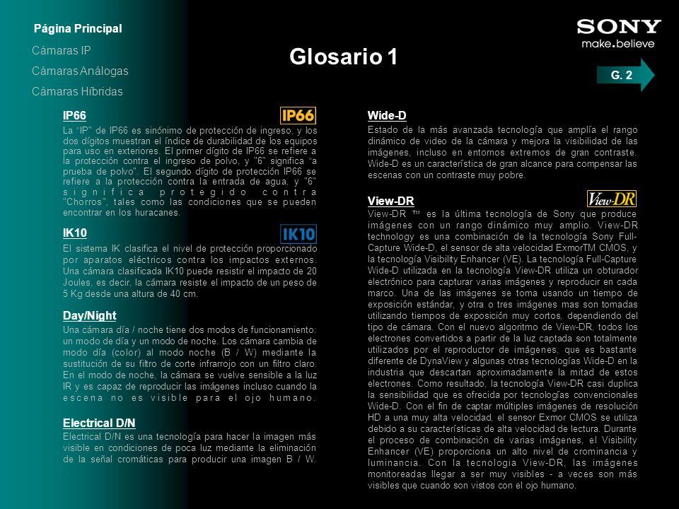 Glosario 1 La IP