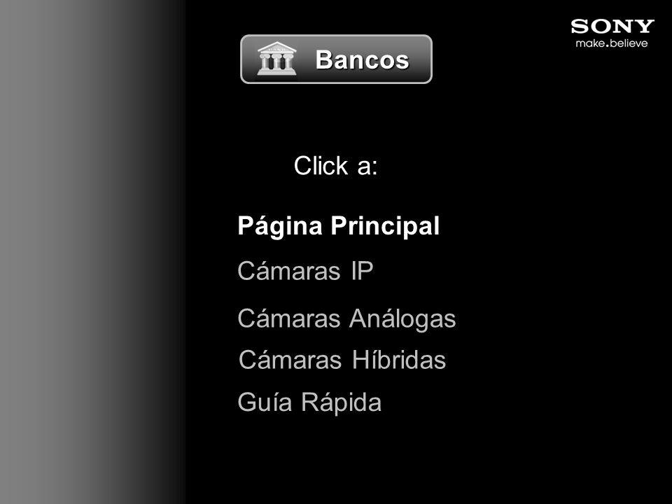 Bancos Bancos Click a: Página Principal Guía Rápida Cámaras Análogas Cámaras Híbridas Cámaras IP