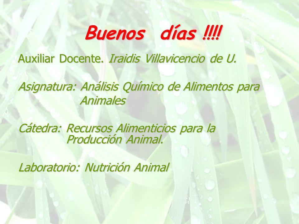 Buenos días !!!! Auxiliar Docente. Iraidis Villavicencio de U. Asignatura: Análisis Químico de Alimentos para Animales Animales Cátedra: Recursos Alim