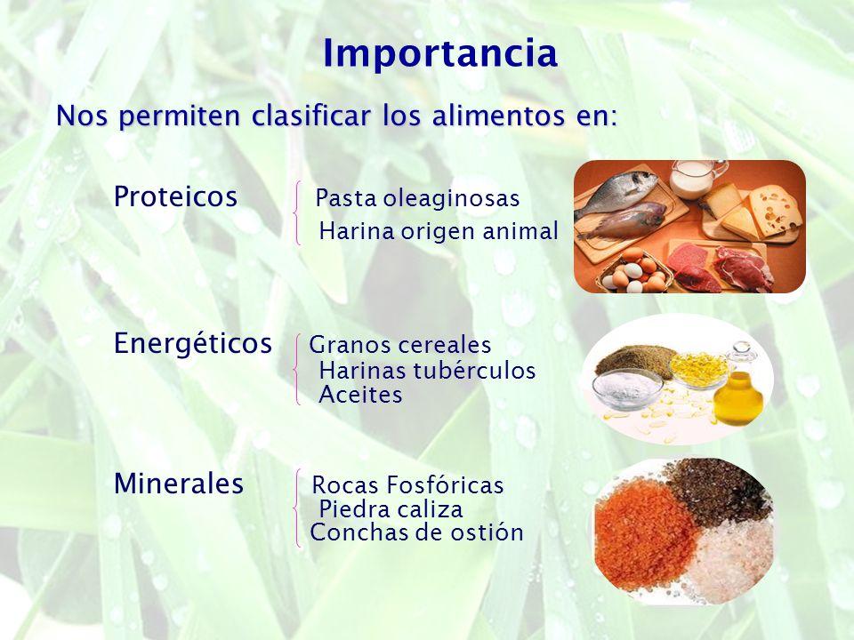 Nos permiten clasificar los alimentos en: Proteicos Pasta oleaginosas Harina origen animal Energéticos Granos cereales Harinas tubérculos Aceites Mine
