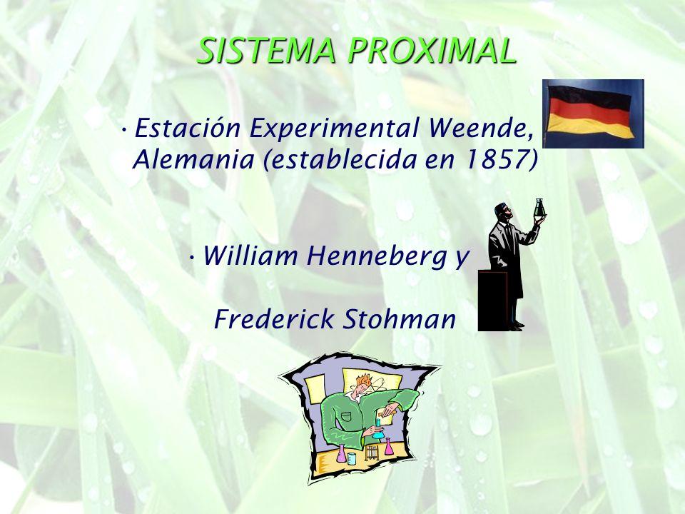 SISTEMA PROXIMAL Estación Experimental Weende, Alemania (establecida en 1857) William Henneberg y Frederick Stohman
