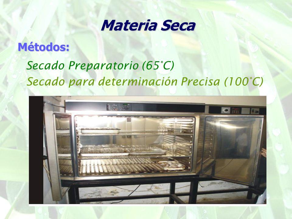 Materia Seca Métodos: Secado Preparatorio (65°C) Secado para determinación Precisa (100°C)