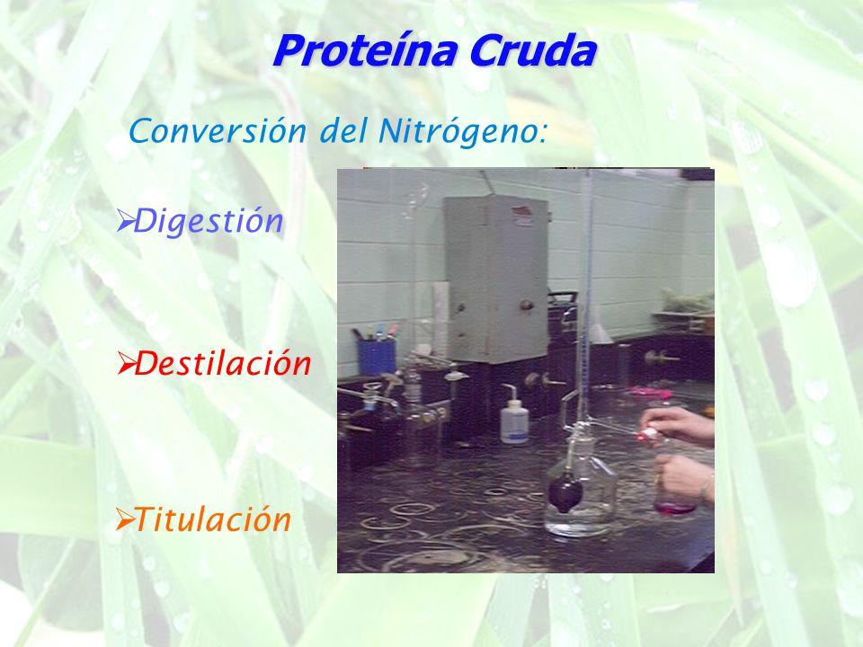 Proteína Cruda El contenido de NT se multiplica por 6,25 para obtener Proteína Cruda Nitrógeno Total ProteicoNo proteico Factores para la conversión de los valores de nitrógeno en proteínas (por g de N)* Producto alimenticio Productos animales Carne y pescado Gelatina Leche y productos lácteos Caseína Leche humana Huevos enteros albúmina vitelina * (Cuando no se indica ningún factor específico, se debe utilizar el de 6,25 hasta que se haya determinado uno más apropiado).