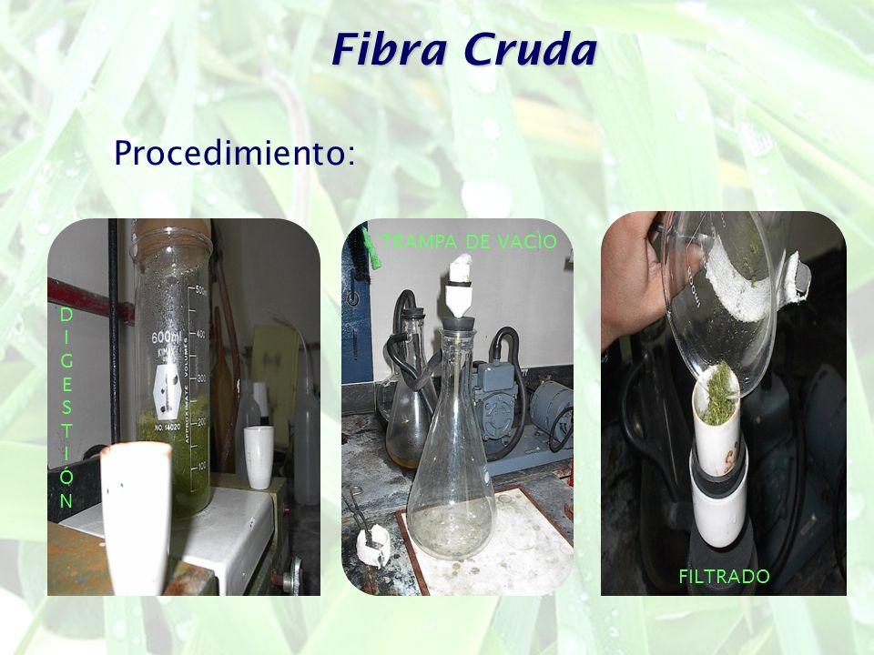 Fibra Cruda TRAMPA DE VACÌO FILTRADO DIGESTIÓNDIGESTIÓN Procedimiento: