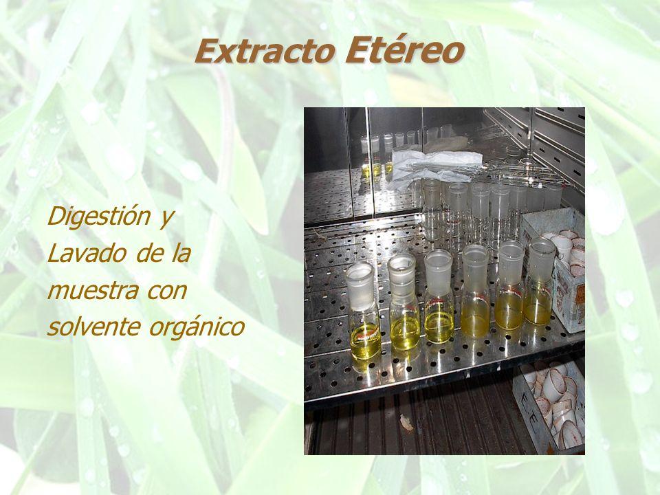 Extracto Libre de Nitrógeno Determinación por Diferencia ELN = 100 - ( %Hum + %Cen + %PC + %EE + %FC )