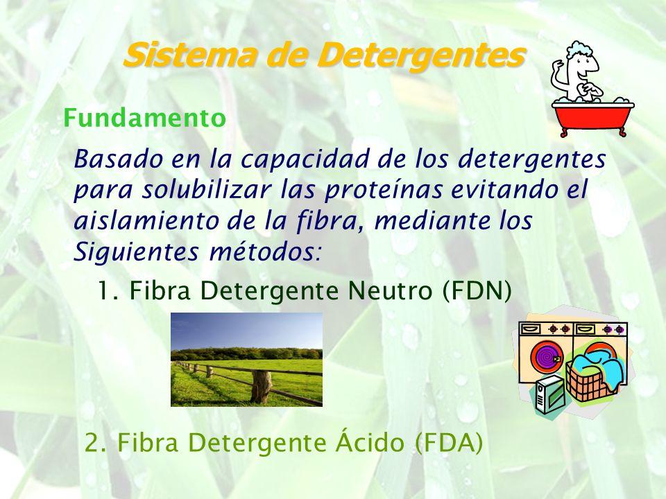 Basado en la capacidad de los detergentes para solubilizar las proteínas evitando el aislamiento de la fibra, mediante los Siguientes métodos: Fundame