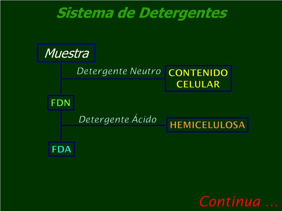 Sistema de Detergentes CELULOSA + CUTINA + MINERALES FDA LIGNINA CELULOSA KMnO 4 H 2 SO 4 72% CUTINA + MINERALES 500 °C CUTINA MINERALES