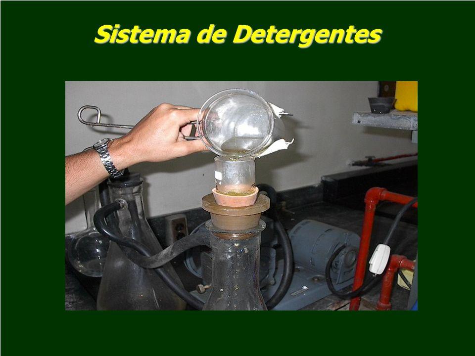 Energía Bruta Cantidad de calor liberado, en Kcal/gr de una determinada muestra cuando es completamente oxidada hasta CO 2, agua y otros gases, en presencia de 25 a 30 atmósferas de Oxígeno en una bomba calorimétrica Cantidad de calor liberado, en Kcal/gr de una determinada muestra cuando es completamente oxidada hasta CO 2, agua y otros gases, en presencia de 25 a 30 atmósferas de Oxígeno en una bomba calorimétrica