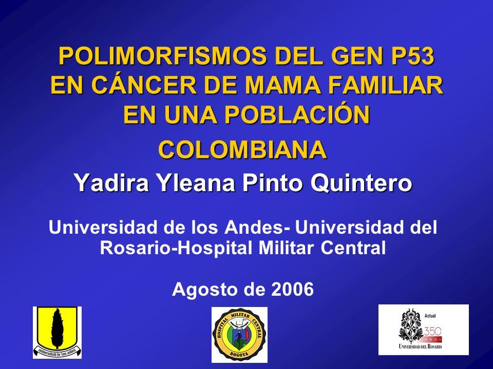 Yadira Yleana Pinto Quintero Universidad de los Andes- Universidad del Rosario-Hospital Militar Central Agosto de 2006 POLIMORFISMOS DEL GEN P53 EN CÁ