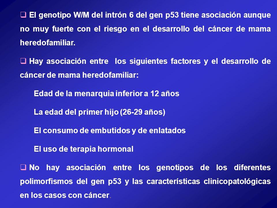 El genotipo W/M del intrón 6 del gen p53 tiene asociación aunque no muy fuerte con el riesgo en el desarrollo del cáncer de mama heredofamiliar. Hay a