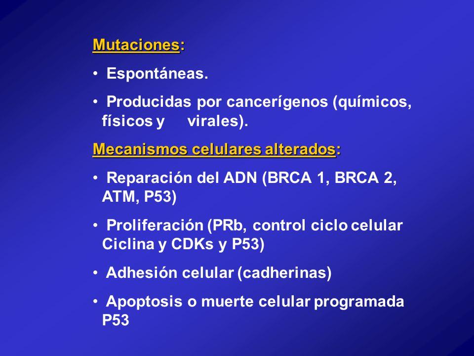 Mutaciones: Espontáneas. Producidas por cancerígenos (químicos, físicos y virales). Mecanismos celulares alterados: Reparación del ADN (BRCA 1, BRCA 2