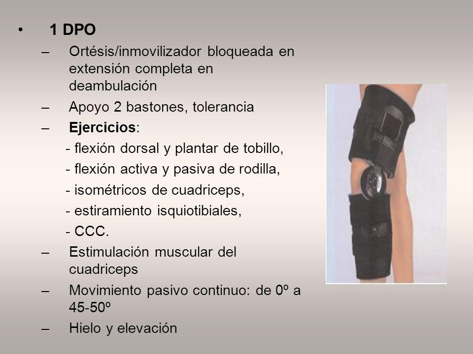 1 DPO –Ortésis/inmovilizador bloqueada en extensión completa en deambulación –Apoyo 2 bastones, tolerancia –Ejercicios: - flexión dorsal y plantar de