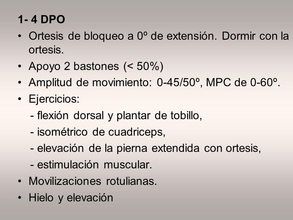 1- 4 DPO Ortesis de bloqueo a 0º de extensión. Dormir con la ortesis. Apoyo 2 bastones (< 50%) Amplitud de movimiento: 0-45/50º, MPC de 0-60º. Ejercic