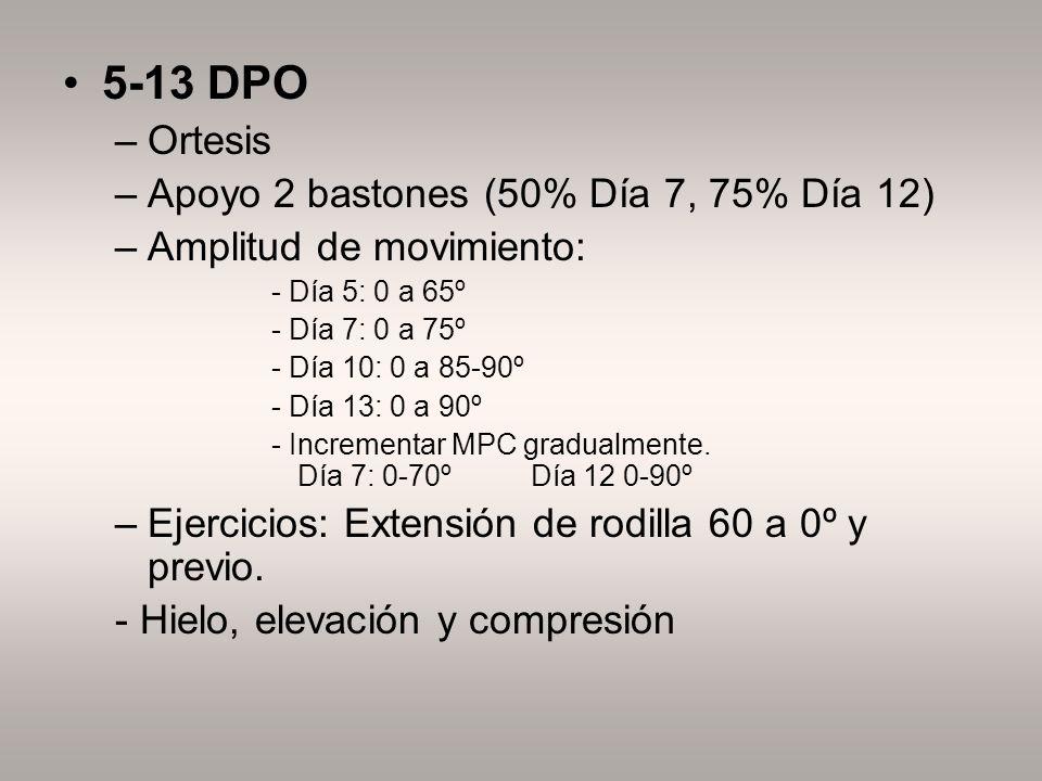 5-13 DPO –Ortesis –Apoyo 2 bastones (50% Día 7, 75% Día 12) –Amplitud de movimiento: - Día 5: 0 a 65º - Día 7: 0 a 75º - Día 10: 0 a 85-90º - Día 13: