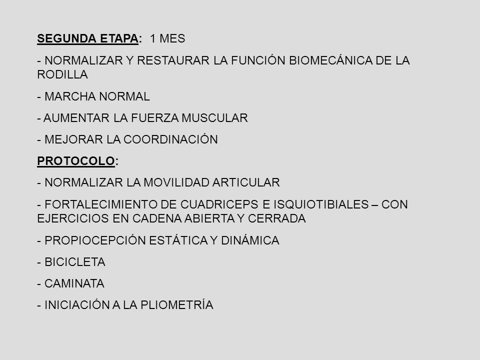 SEGUNDA ETAPA: 1 MES - NORMALIZAR Y RESTAURAR LA FUNCIÓN BIOMECÁNICA DE LA RODILLA - MARCHA NORMAL - AUMENTAR LA FUERZA MUSCULAR - MEJORAR LA COORDINACIÓN PROTOCOLO: - NORMALIZAR LA MOVILIDAD ARTICULAR - FORTALECIMIENTO DE CUADRICEPS E ISQUIOTIBIALES – CON EJERCICIOS EN CADENA ABIERTA Y CERRADA - PROPIOCEPCIÓN ESTÁTICA Y DINÁMICA - BICICLETA - CAMINATA - INICIACIÓN A LA PLIOMETRÍA