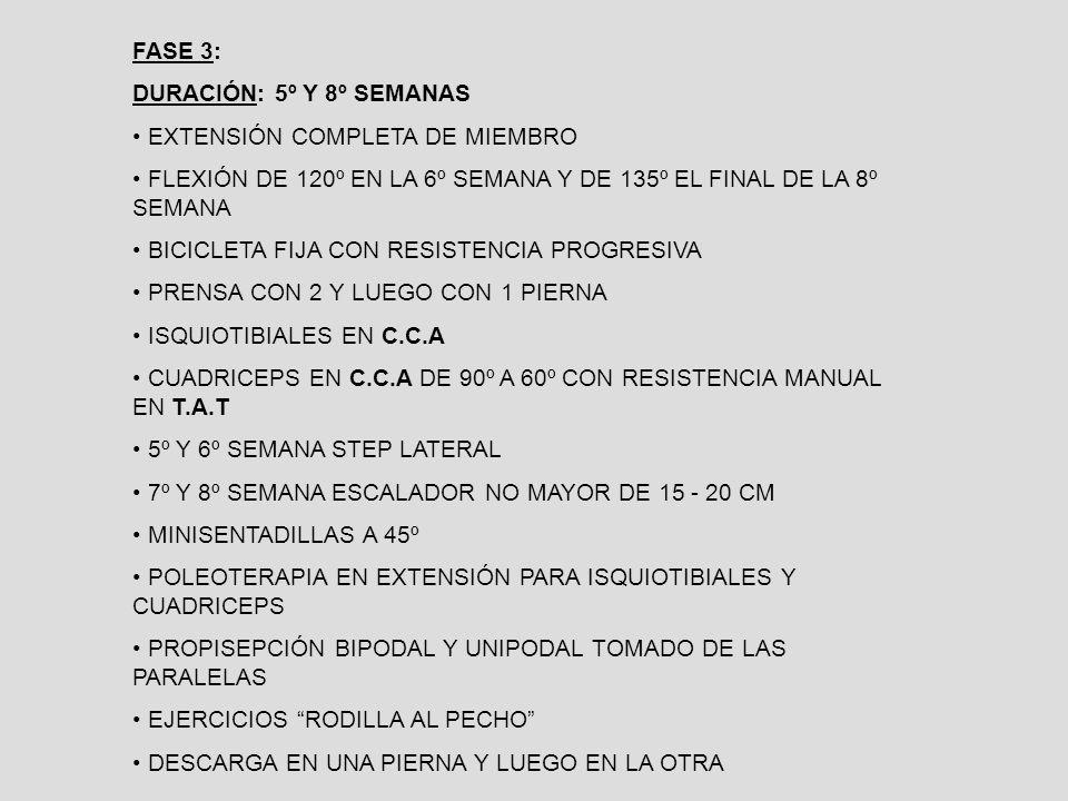FASE 3: DURACIÓN: 5º Y 8º SEMANAS EXTENSIÓN COMPLETA DE MIEMBRO FLEXIÓN DE 120º EN LA 6º SEMANA Y DE 135º EL FINAL DE LA 8º SEMANA BICICLETA FIJA CON RESISTENCIA PROGRESIVA PRENSA CON 2 Y LUEGO CON 1 PIERNA ISQUIOTIBIALES EN C.C.A CUADRICEPS EN C.C.A DE 90º A 60º CON RESISTENCIA MANUAL EN T.A.T 5º Y 6º SEMANA STEP LATERAL 7º Y 8º SEMANA ESCALADOR NO MAYOR DE 15 - 20 CM MINISENTADILLAS A 45º POLEOTERAPIA EN EXTENSIÓN PARA ISQUIOTIBIALES Y CUADRICEPS PROPISEPCIÓN BIPODAL Y UNIPODAL TOMADO DE LAS PARALELAS EJERCICIOS RODILLA AL PECHO DESCARGA EN UNA PIERNA Y LUEGO EN LA OTRA