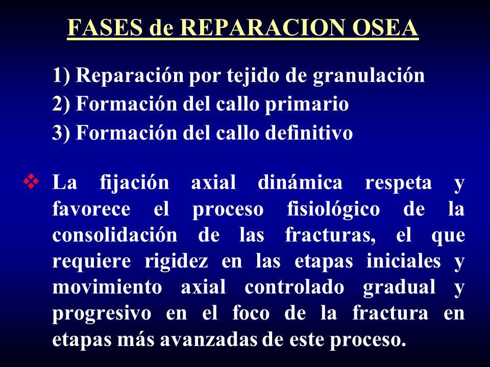 1) Reparación por tejido de granulación 2) Formación del callo primario 3) Formación del callo definitivo La fijación axial dinámica respeta y favorec