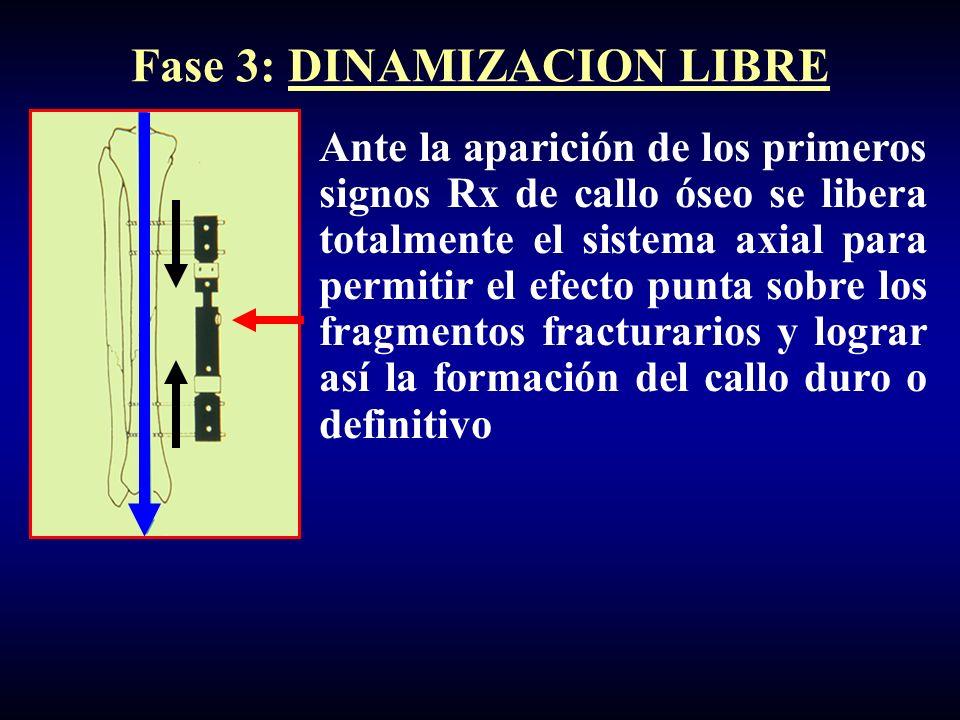 Fase 3: DINAMIZACION LIBRE Ante la aparición de los primeros signos Rx de callo óseo se libera totalmente el sistema axial para permitir el efecto punta sobre los fragmentos fracturarios y lograr así la formación del callo duro o definitivo