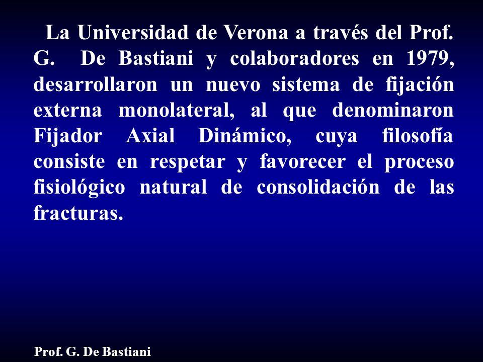 La Universidad de Verona a través del Prof. G. De Bastiani y colaboradores en 1979, desarrollaron un nuevo sistema de fijación externa monolateral, al