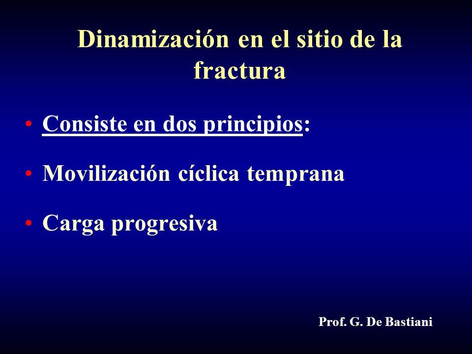 Dinamización en el sitio de la fractura Consiste en dos principios: Movilización cíclica temprana Carga progresiva Prof.
