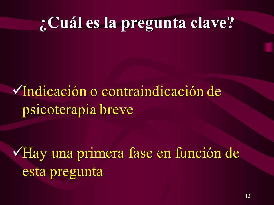13 ¿Cuál es la pregunta clave? Indicación o contraindicación de psicoterapia breve Indicación o contraindicación de psicoterapia breve Hay una primera