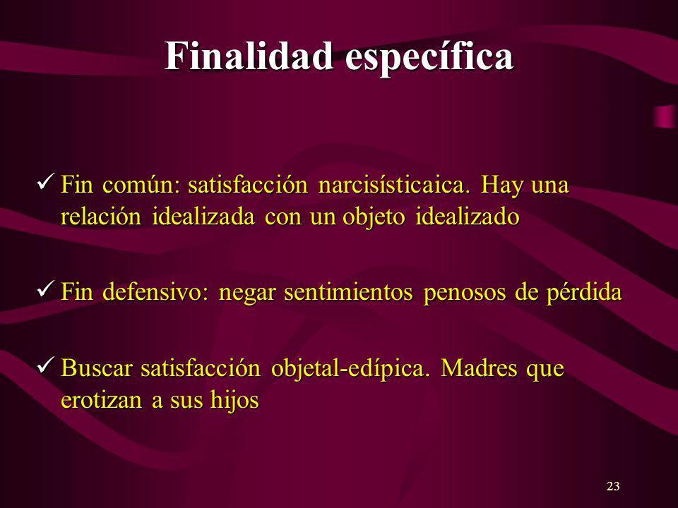23 Finalidad específica Fin común: satisfacción narcisísticaica. Hay una relación idealizada con un objeto idealizado Fin común: satisfacción narcisís