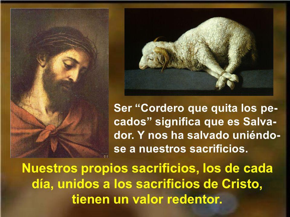 Un verdadero pecado es una ofensa infinita contra Dios.