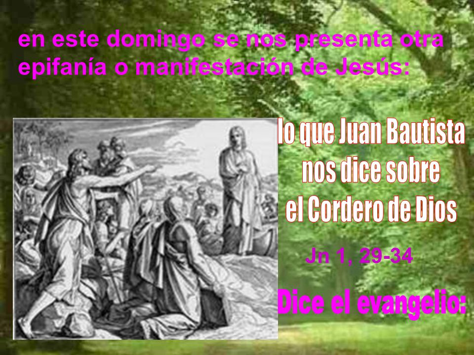 en este domingo se nos presenta otra epifanía o manifestación de Jesús: Jn 1, 29-34
