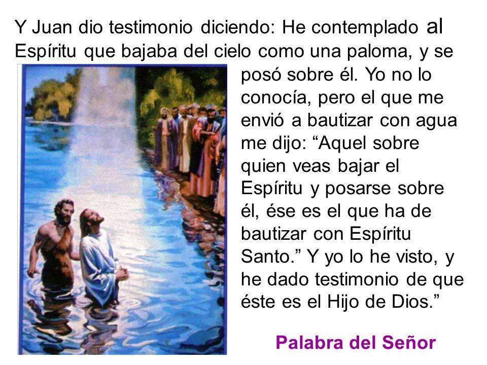 En aquel tiempo, al ver Juan a Jesús que venía hacia él, exclamó: Éste es el Corde- ro de Dios que quita el pecado del mundo.