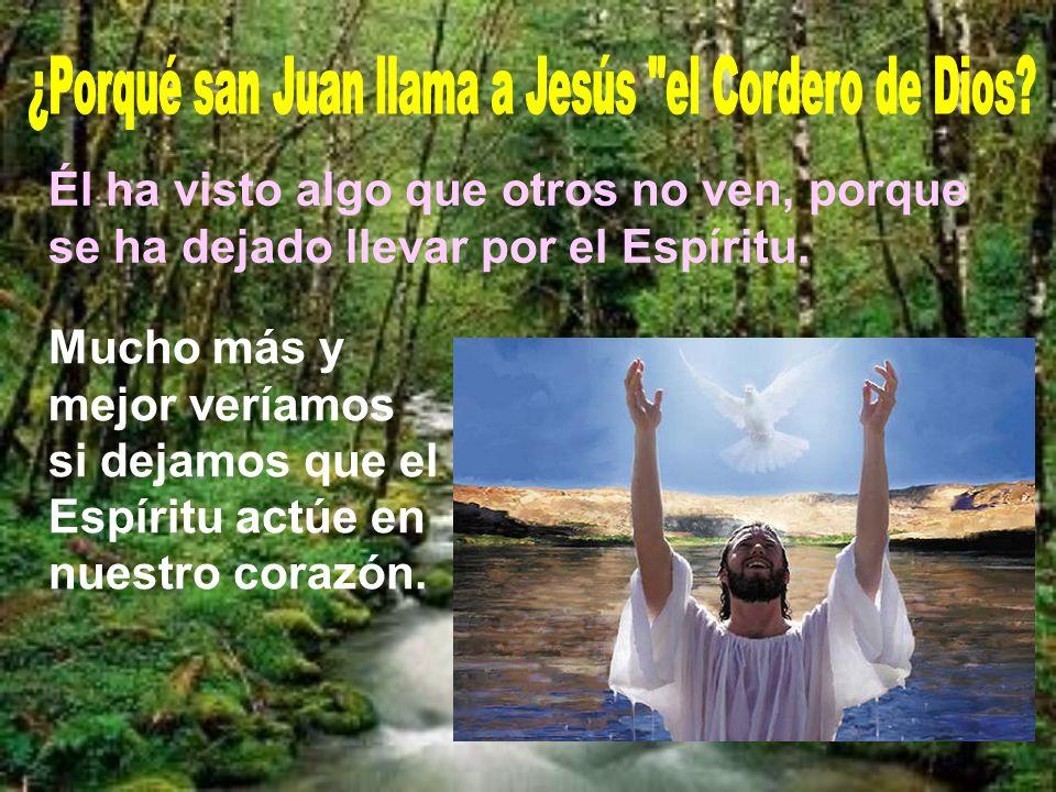 Al día siguiente de bautizar a Jesús, Juan ve venir a Jesús y proclama: Éste es el Cordero de Dios que quita el pecado del mundo.