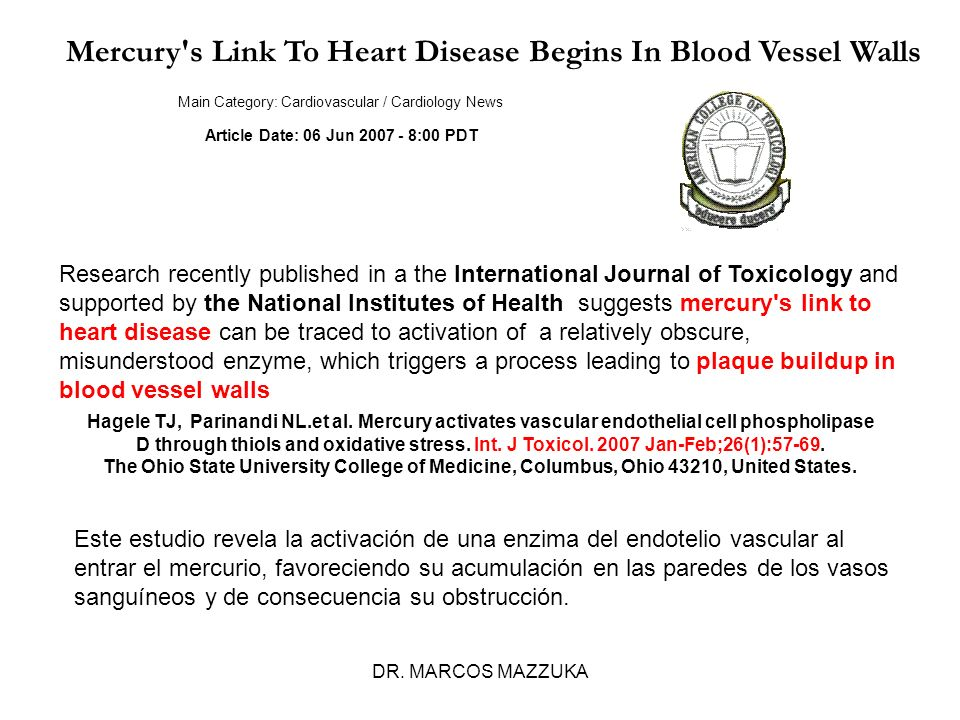 DR. MARCOS MAZZUKA Mercury's Link To Heart Disease Begins In Blood Vessel Walls Main Category: Cardiovascular / Cardiology News Article Date: 06 Jun 2