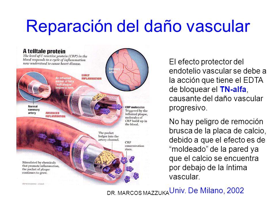 DR. MARCOS MAZZUKA Reparación del daño vascular El efecto protector del endotelio vascular se debe a la acción que tiene el EDTA de bloquear el TN-alf