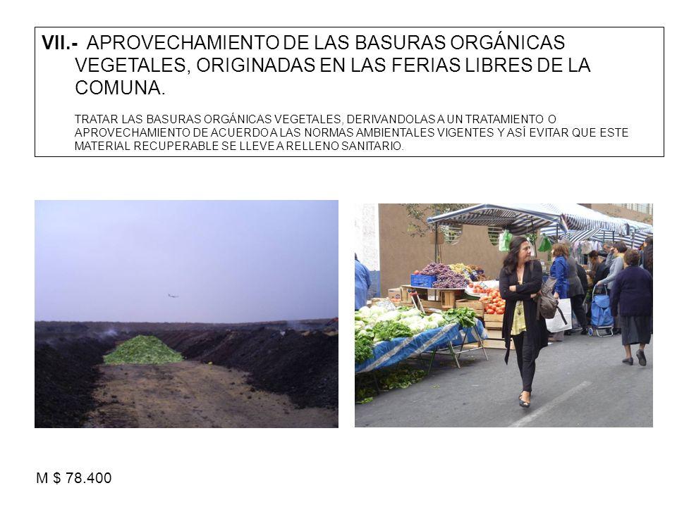VII.- APROVECHAMIENTO DE LAS BASURAS ORGÁNICAS VEGETALES, ORIGINADAS EN LAS FERIAS LIBRES DE LA COMUNA. TRATAR LAS BASURAS ORGÁNICAS VEGETALES, DERIVA