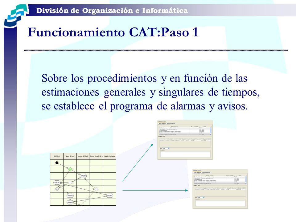 División de Organización e Informática Funcionamiento CAT:Paso 1 Sobre los procedimientos y en función de las estimaciones generales y singulares de t