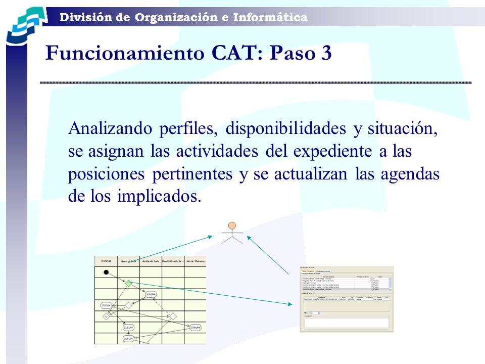 División de Organización e Informática Analizando perfiles, disponibilidades y situación, se asignan las actividades del expediente a las posiciones p
