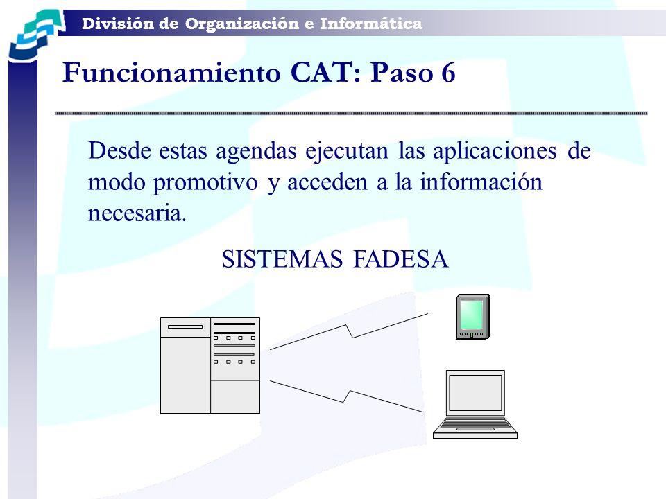 División de Organización e Informática Desde estas agendas ejecutan las aplicaciones de modo promotivo y acceden a la información necesaria. SISTEMAS