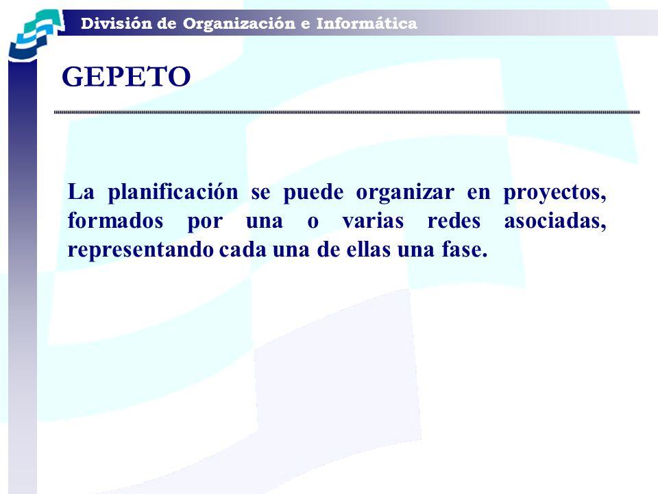 División de Organización e Informática La planificación se puede organizar en proyectos, formados por una o varias redes asociadas, representando cada