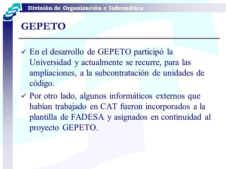 En el desarrollo de GEPETO participó la Universidad y actualmente se recurre, para las ampliaciones, a la subcontratación de unidades de código. Por o