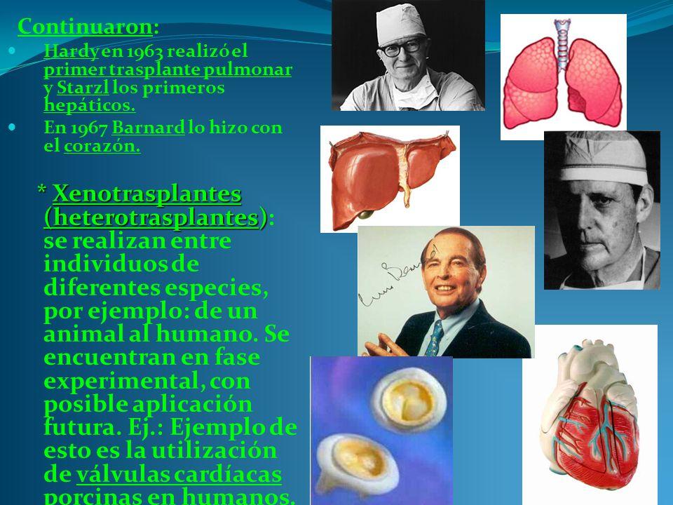 Continuaron: Hardy en 1963 realizó el primer trasplante pulmonar y Starzl los primeros hepáticos.