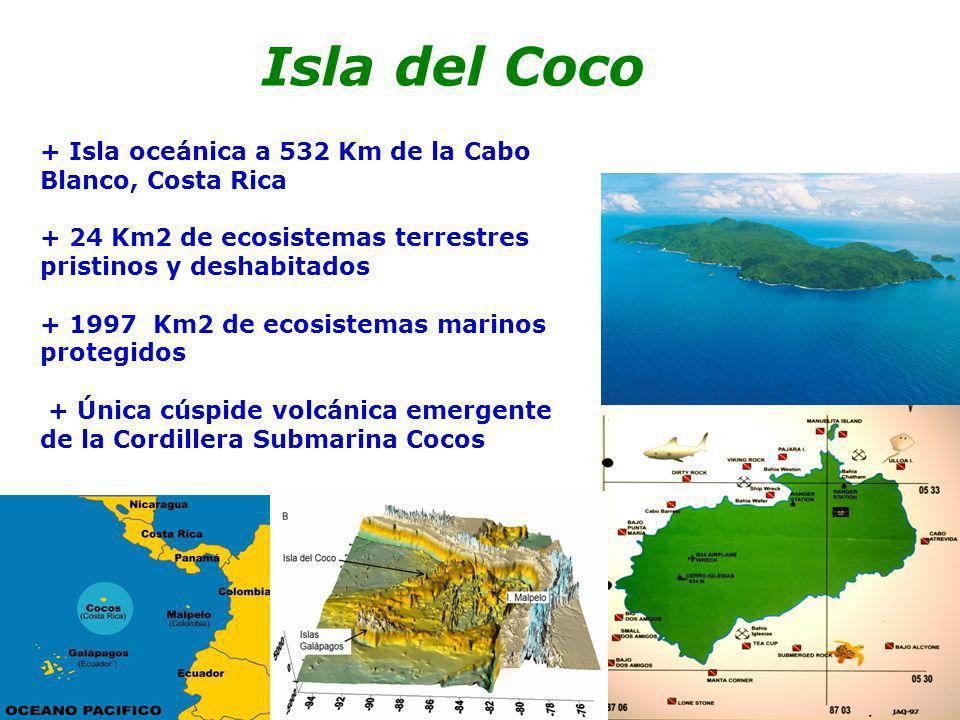 + Isla oceánica a 532 Km de la Cabo Blanco, Costa Rica + 24 Km2 de ecosistemas terrestres pristinos y deshabitados + 1997 Km2 de ecosistemas marinos p