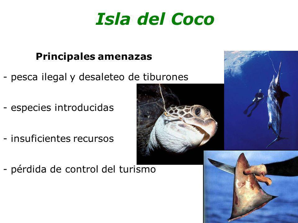 Principales amenazas - pesca ilegal y desaleteo de tiburones - especies introducidas - insuficientes recursos - pérdida de control del turismo Isla de