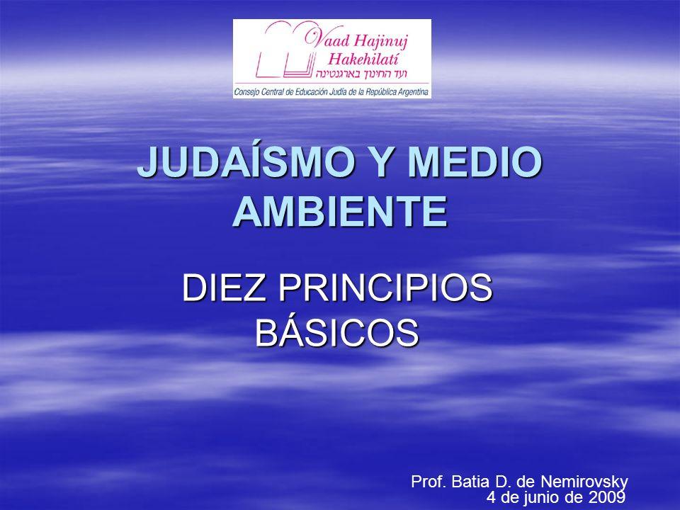 JUDAÍSMO Y MEDIO AMBIENTE DIEZ PRINCIPIOS BÁSICOS Prof. Batia D. de Nemirovsky 4 de junio de 2009
